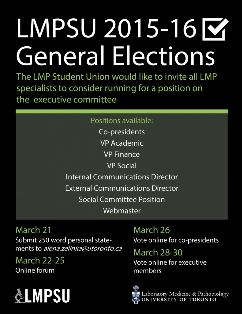 Elections-poster-Lisa-edit